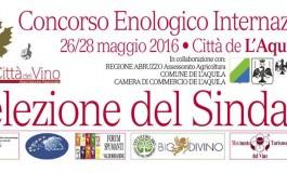 Concurs Selezione del Sindaco, Italia 2016
