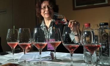 """Arina Antoce: producatorii de vinuri din Oporto (Portugieser)  ar putea fi interesati de un concurs """"Portuguieser du Monde"""""""