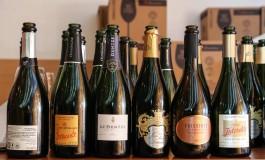 Masterclass Champagne la Salonul Vinvest Timisoara 2017